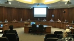 Councilors support new policing programs