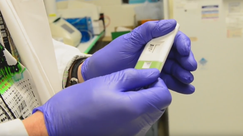 Researchers at Western University have developed an E.coli testing kit. (Western University / YouTube)