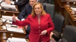 and Children, Community and Social Services Minister Lisa MacLeod is seen at Queen's Park in this undated picture.