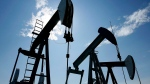 Pumpjacks are shown pumping crude oil near Halkirk, Alta., on June 20, 2007. THE CANADIAN PRESS/Larry MacDougal