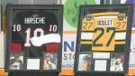 Lethbridge minor hockey unveils wall of honour