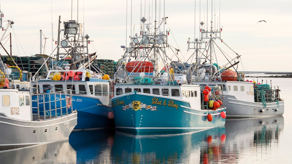 Boats remain tied to the wharf in Clark's Harbour, N.S., on Monday, November 26, 2018. (THE CANADIAN PRESS/Andrew Vaughan)