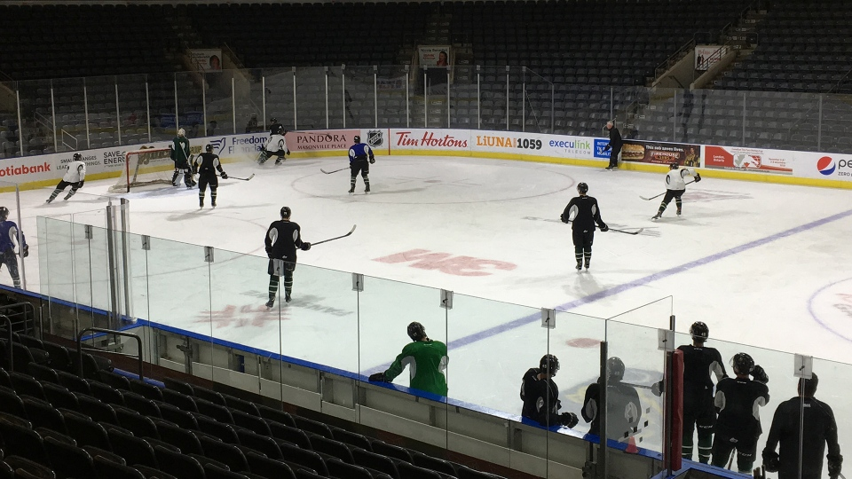 Knights Defying Expectations For Rebuilding Team Ctv News