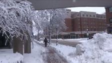 Moncton snowstorm