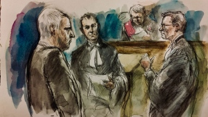 Bruce McArthur is pictured in court on Nov. 30, 2018. (Pam Davies)