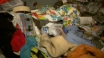 Help for Hoarders