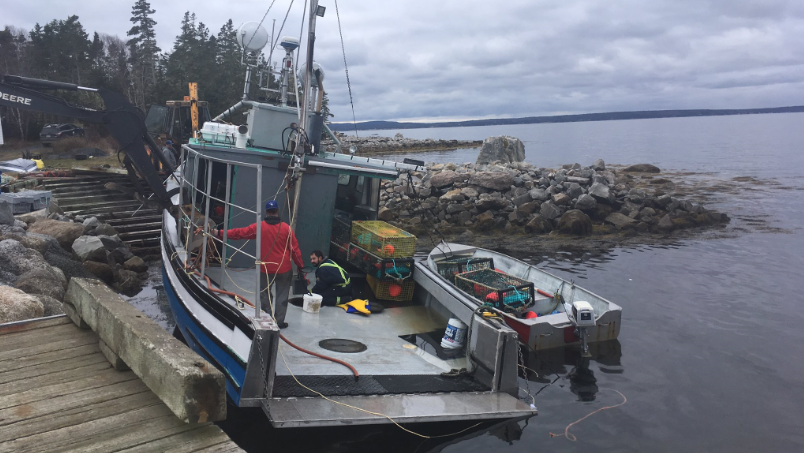A fishing vessel sank Saturday as Canada's largest and most lucrative lobster fisheries opened off Nova Scotia, but all crew members were reported safe.