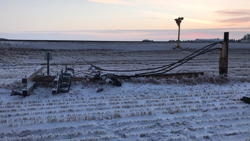 A downed power line in southern Saskatchewan caused by rime frost. (CREDIT: SASKPOWER)