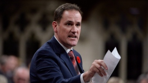 Conservative MP Dan Albas rises during question period in the House of Commons on Parliament Hill in Ottawa on Thursday, Nov.1, 2018. THE CANADIAN PRESS/Adrian Wyld