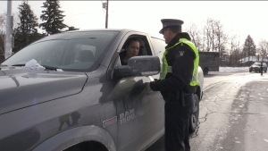 A police officer speaks to a driver at a roadside stop in this file photo.