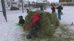 Orillia Winter Carnival cancelled