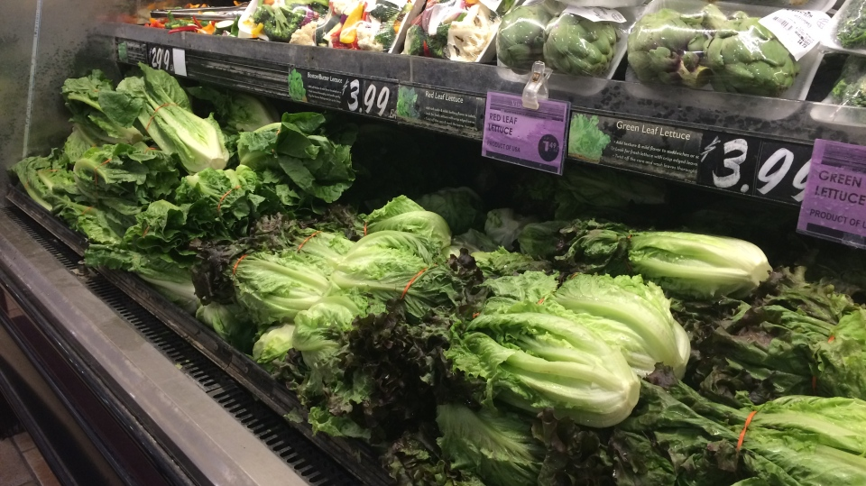 Prices of Boston lettuce, red leaf lettuce, and iceberg shot up by approximately 50% after romaine advisory - Wednesday, Dec. 5, 2018 (CTV News/Beatrice Vaisman)