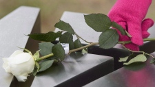 A woman places a rose on a memorial of one of the