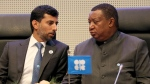 Minister of Energy of the United Arab Emirates, UAE, Suhail Mohamed Al Mazrouei talks with Mohammad Sanusi Barkindo, from left, OPEC Secretary General of Nigeria prior to the start of a meeting of the Organization of the Petroleum Exporting Countries, OPEC, at their headquarters in Vienna, Austria, Thursday, Dec. 6, 2018. (AP Photo/Ronald Zak)