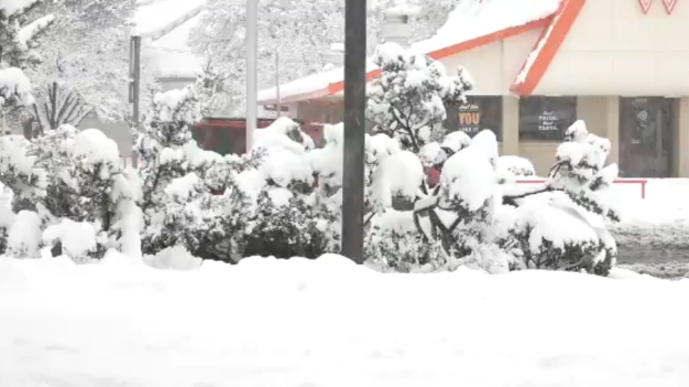 Southern U.S. braces for wintry storm