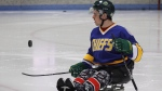 Humboldt Broncos hockey player Ryan Straschnitzki flips a puck before a sled hockey scrimmage at the Edge Ice Arena in Littleton, Colo., on Friday, Nov. 23, 2018. (THE CANADIAN PRESS/Joe Mahoney)