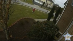 Police have released shocking footage showing a small child being directed to steal parcels from a front porch. (Facebook/Harford County Sheriffs Office)