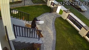 Caught on cam: A parcel thief takes a package from a South Vancouver home on Friday, Dec. 9.