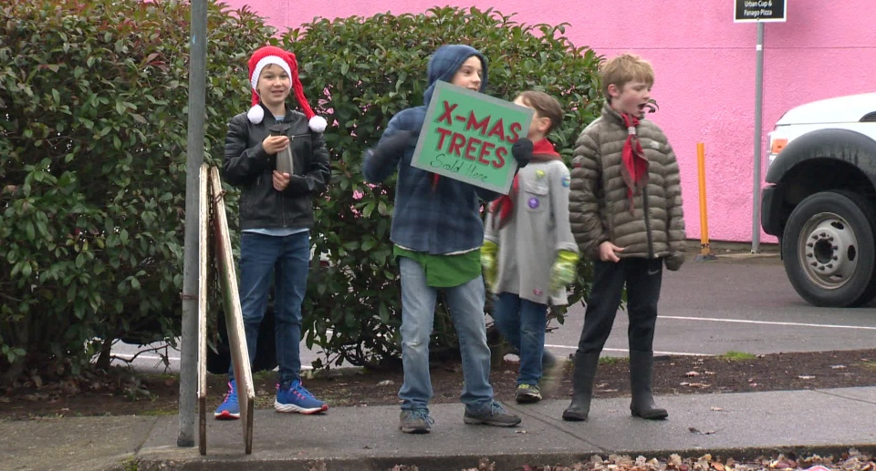 Christmas Tree sales are the largest single fundraiser for local Scouts, and goes a long way toward supporting their activities for the year. Dec. 9, 2018. (CTV Vancouver Island)