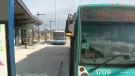 STO bus
