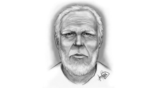 Grey County OPP released this sketch of a man sought in an incident involving a young girl in Meaford, Ont. in Sept. 2017.