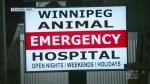 Arrest made after vet clinics defrauded