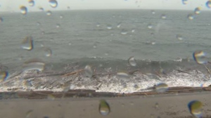 Winds of up to 90 km/h and rainfall of up to 100 mm is expected in parts of Vancouver Island. (CTV News)