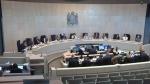 Edmonton council