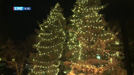 City Hall's Light Up the Lights Event