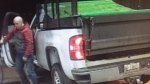 Police are looking for public help in locating a stolen pickup truck. (Source: Guelph Police Service)