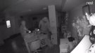 Two suspects sought in a break and enter in Woodstock, Ont. on Thursday, Dec. 13, 2018 are seen in this image from video provided by the Woodstock Police Service.