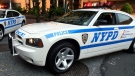 FILE - NYPD vehicles are pictured in New York on Monday, Aug. 14, 2006. (AP / Mary Altaffer)