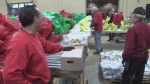 Salvation Army Christmas Hamper campaign kick-off