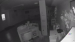 From CTV Kitchener: Two thieves were caught on vid