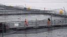 The Okisollo fish farm is pictured during a DFO fish health audit near Campbell River, B.C. Wednesday, Oct. 31, 2018. THE CANADIAN PRESS /Jonathan Hayward