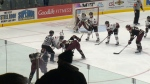 Guelph Storm blow away the Peterborough Petes