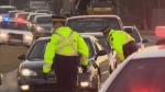 N.B. government to increase penalties of driving on drugs