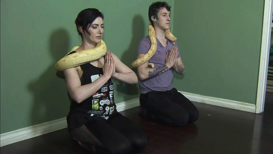 Tristan Risk and her partner, Joshua Burns are bringing snake yoga classes to Vancouver.