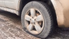 At least 16 vehicles' tires in the Holliston neighbourhood were slashed between Sunday night and Monday morning. (Laura Woodward/CTV Saskatoon)