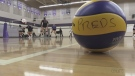 Kitchener volleyball team continues to smash