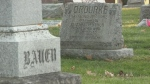Kitchener's oldest cemetery expanding