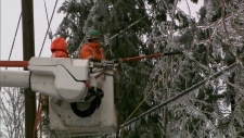 A BC Hydro power line technician is seen during a storm in the Fraser Valley in 2017.