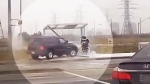 YRP share video of impaired driver