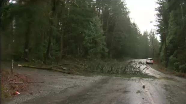 Thousands still without power in B.C. after severe windstorm