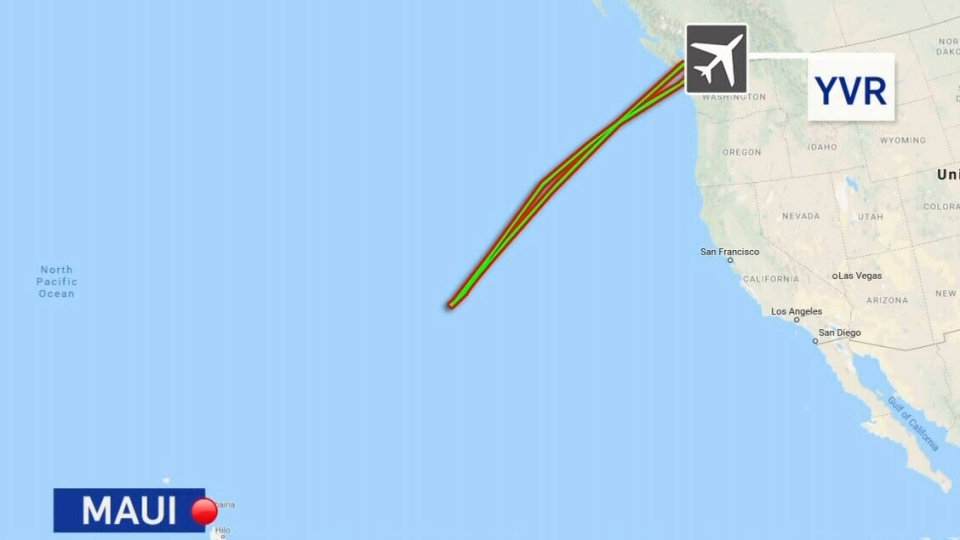A Maui-bound Air Canada flight was forced to return to Vancouver. (CTV News)