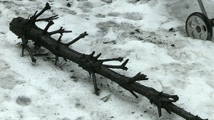 The charred remains of Doug Ashenden's Christmas tree sits in the snow outside his home in Emsdale, Ont. (CTV Barrie)