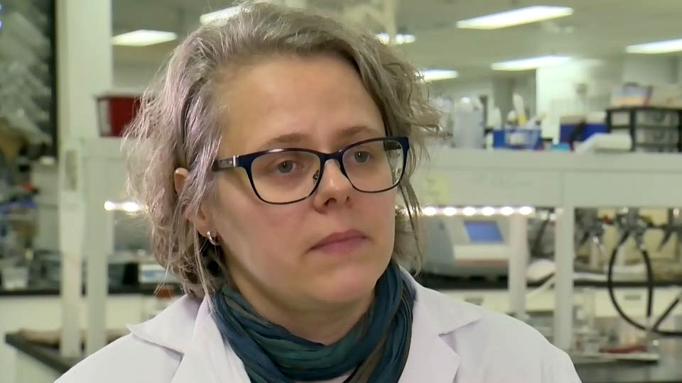 Audrey Moores is an associate professor of chemistry at McGill University in Montreal. (CTV Montreal)