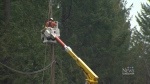 BC Hydro crews are working to restore power to residents on Vancouver island and the Gulf Islands.