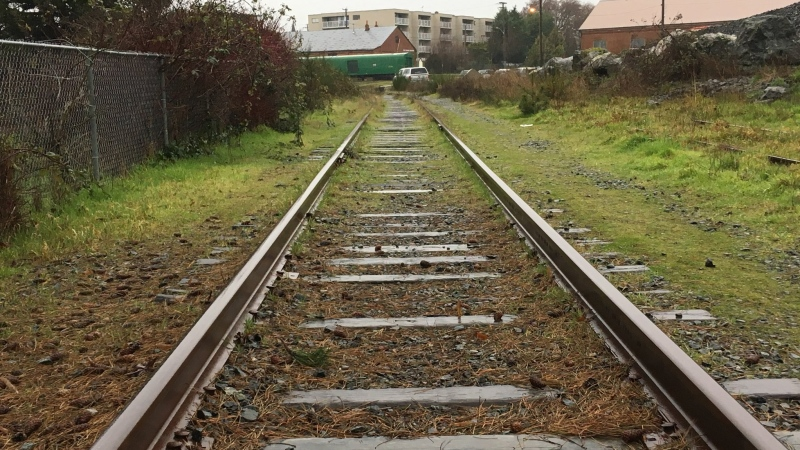 An overgrown section of unused E&N rail line is shown in Esquimalt. Jan. 3, 2019. (CTV Vancouver island)