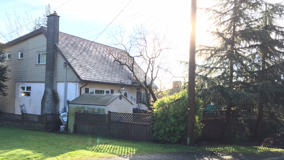 The tree also bumped up against Fred Gracia's home, but the Saanich man says it's not yet clear whether it caused structural damage. Jan. 4, 2019. (CTV Vancouver Island)